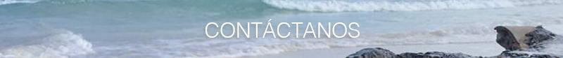 Contact UXATA Private Chef Services