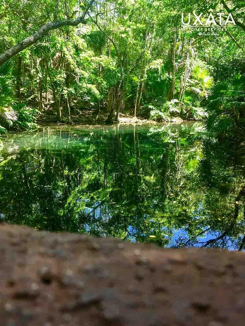 Cenote in Tankah, Riviera Maya, Mexico