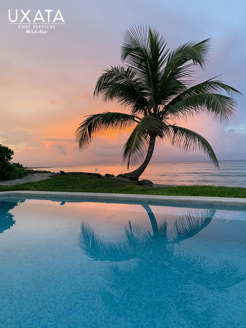 A pool, a palm, the Akumal Bay beach and the caribbean sea