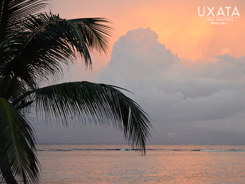 The sunset, clouds, a palm tree and the sea of Akumal Bay